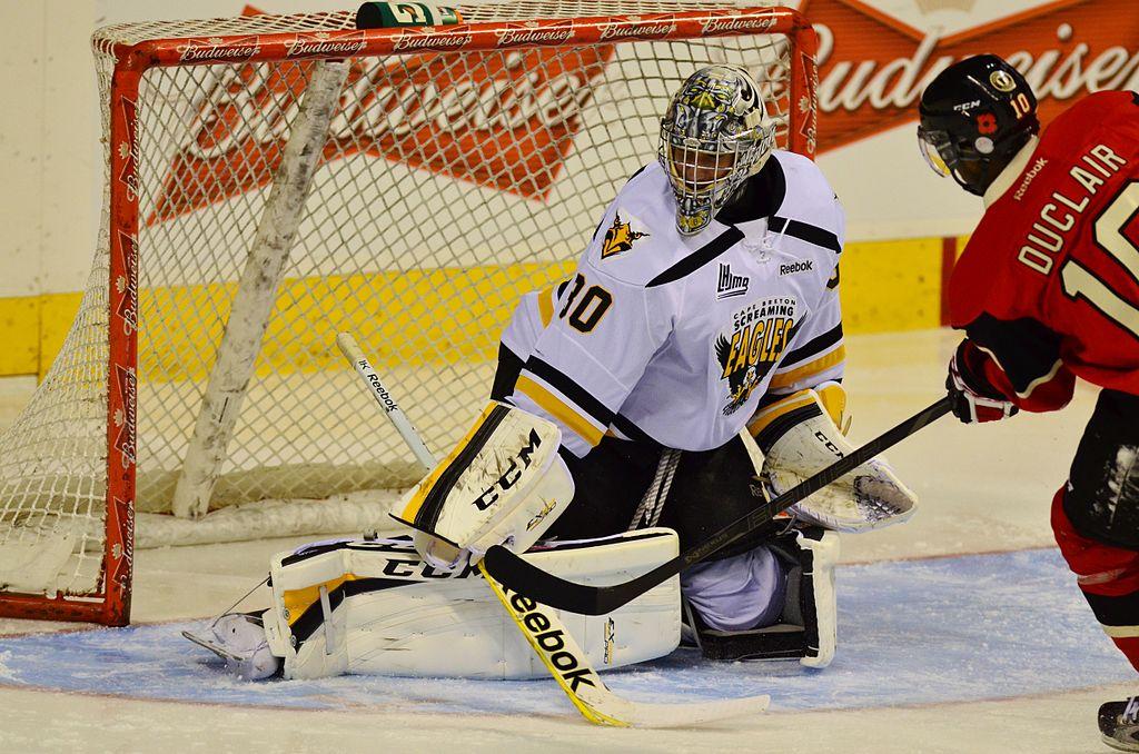 Un gardien de hockey sur glace
