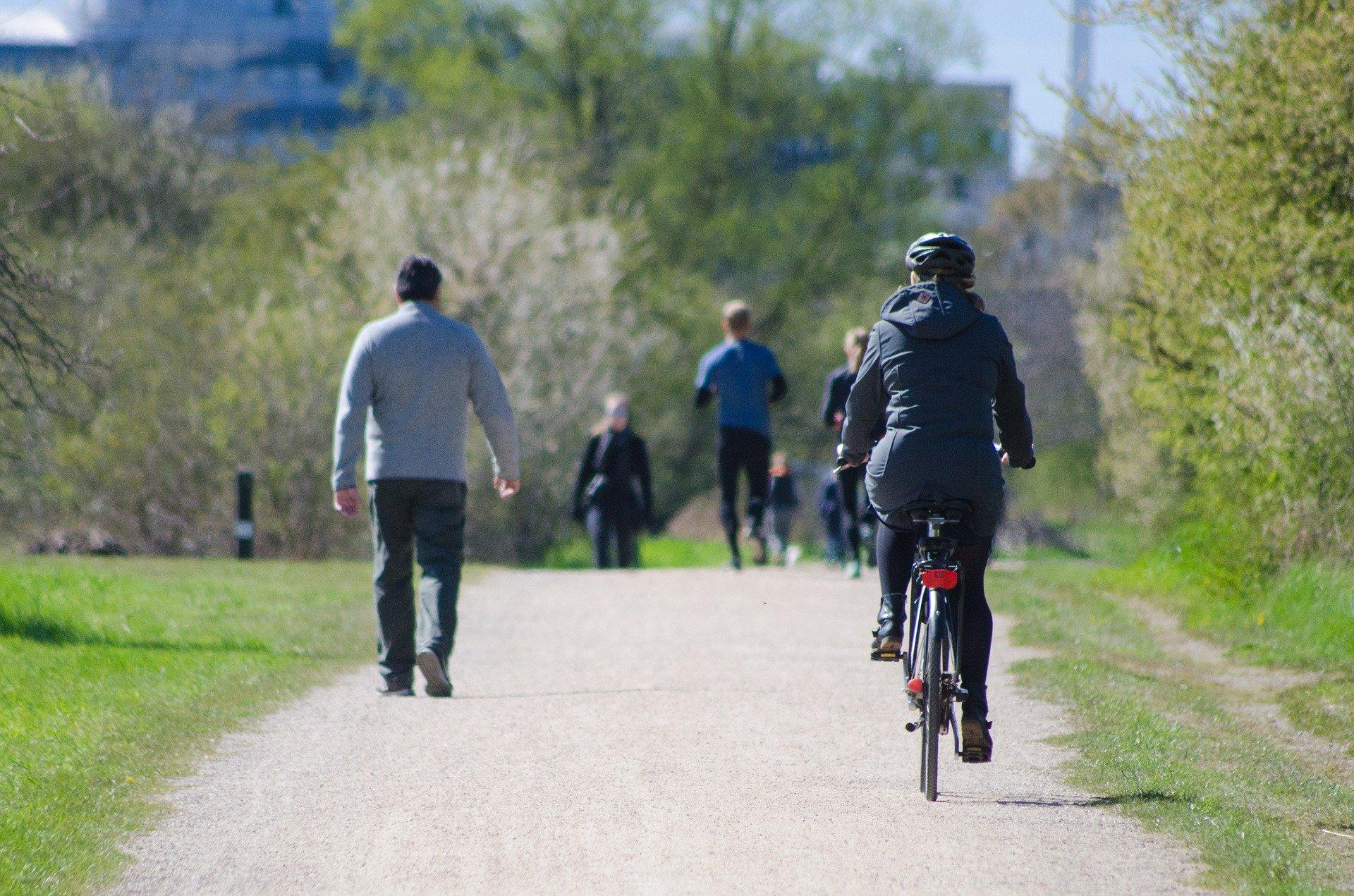 Service de location de vélo